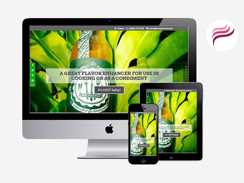 Maui Web Design - Maui Marketing Agency